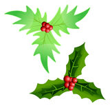 Chrismas leaves Royalty Free Stock Images