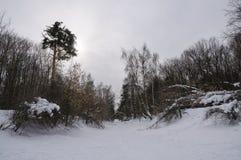 Chrismas-Schnee Lizenzfreies Stockfoto