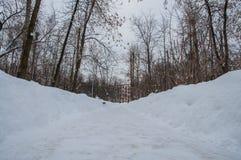 Chrismas snö Royaltyfria Bilder