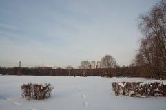 Chrismas snö Arkivbilder