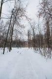 Chrismas snö Fotografering för Bildbyråer