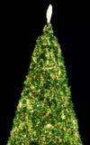 Chrismas träd med ljus på natten Royaltyfria Foton