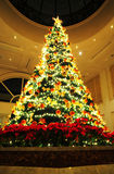 Chrismas tree. In the room ,at nighi,beautiful light Royalty Free Stock Image