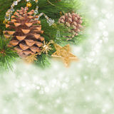 Chrismas tree and pine cones. On background with sparkles Royalty Free Stock Image