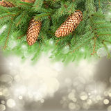 Chrismas tree and pine cones. On gray festive background with sparkles Royalty Free Stock Image