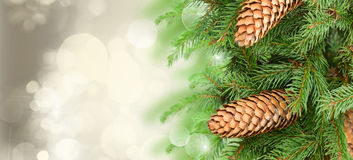 Chrismas tree and pine cones. On gray festive background with sparkles Stock Photography
