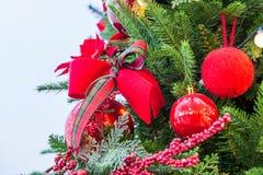Chrismas tree and red ball. Royalty Free Stock Photos