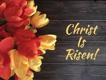 Christ è aumentato Immagine Stock Libera da Diritti