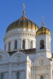 Christ a catedral do salvador Imagem de Stock Royalty Free