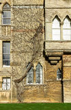 Christ Church College, Oxford, Oxfordshire UK Stock Photo