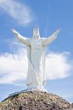 Christ o rei Monumento, Swiebodzin, Poland. foto de stock royalty free