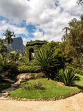 Christ Redeemer Behind Botanical Gardens Royalty Free Stock Photos
