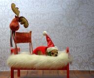 Christams alegre Imagens de Stock