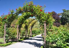 Christchurch botaniska trädgårdar, Nya Zeeland Royaltyfri Bild