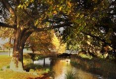 Christchurch en automne images stock