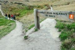 Godley Head Walkway - New Zealand Stock Photography