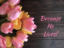 Christian Easter sign with pink and yellow tulips stock image