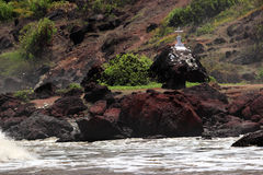 Christian grave near sea, danger. A Christian grave and cross near a rocky beach that is a metaphor for danger and deaths in the ocean Stock Photos