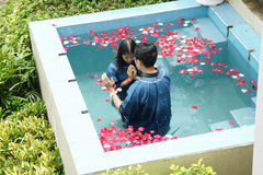 Christian make baptism in water pond at Chaingmai, Thailand. Stock Image