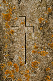 Christian old symbols. Christian cross relief in old headstone covered with yellow lichen. Old religious background under sunlight Stock Image