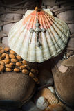 Christian Pilgrimage Symbols - botas y Shell Imagen de archivo libre de regalías