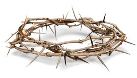 Crown of Thorns. Christianity religion crown of thorns easter thorn crown royalty free stock photos