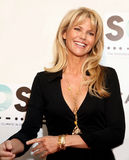 Christie Brinkley Fotografia de Stock