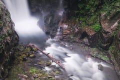 Christine Falls i monteringen Rainier National Park Royaltyfri Foto