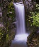 Christine Falls Mt Ranier NP Arkivfoton