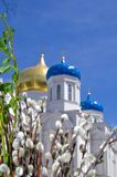 Christliche orthodoxe Kirche feier Palmsonntag Stockbilder