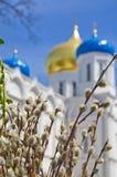 Christliche orthodoxe Kirche feier Palmsonntag Lizenzfreies Stockfoto