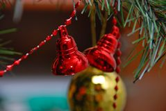 On the christman-tree Stock Photos