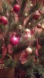 Christmans drzewo Zdjęcia Royalty Free