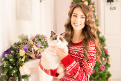 Christmans party, winter holidays woman with cat. New year girl. Christmas tree in interior background royalty free stock photography