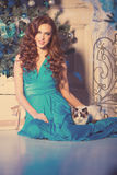Christmans party, winter holidays woman with cat. New year girl. Stock Photos