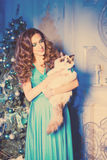 Christmans party, winter holidays woman with cat. New year girl. Stock Photo
