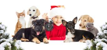 Christmasbarn och en uppsättning av djur Royaltyfria Foton