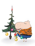 Christmas. Hippo decorates the Christmas tree. Hippo in the Tiger shirt. 2010 Year of the Tiger Stock Image