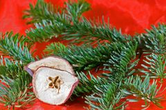 Christmas. Decoration in red and green with dried apple slice Royalty Free Stock Image