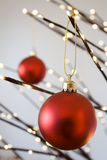 Christmas. Ornaments hanging from  tree Royalty Free Stock Photo
