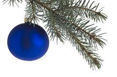 Christmas. Blue christmas ball on branch isolated Royalty Free Stock Image