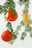 Christmas. A christmas decorations and fir trees Royalty Free Stock Image