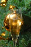 Christmas. Glass of Champagne in front of christmas tree Royalty Free Stock Image