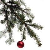 Christmas. Tree decoration Stock Photos