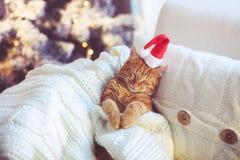 Free Christmas Stock Photo - 47525420
