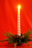 Christmas-6. Holiday decoration, Candle in decorative Christmas tree Royalty Free Stock Photography