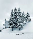 Christmas. A Christmas card snow view Royalty Free Stock Photography