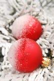 Christmas. Two red christmas ball on christmas tree stock images