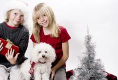 Christmas!. Cute Siblings and their Puppy Dog in the Christmas Spirit Royalty Free Stock Photos
