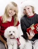 Christmas!. Cute Twins and their Puppy Dog in the Christmas Spirit Royalty Free Stock Image